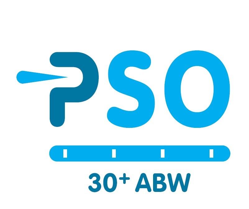 De PSO / 30+ ABW Certificaat en de Code Sociale Ondernemingen - Overeenkomsten en verschillen